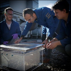 Nelle prove nel deserto, una raccoglitrice di acqua di nuova generazione conferisce acqua fresca dall'aria