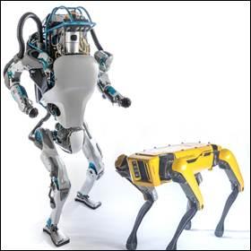 Robot SpotMini e il robot Atlas